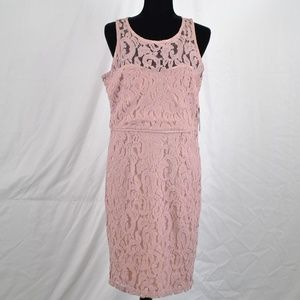 Marina Blush Pink Lace Mid Length Dress (M58A)
